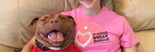El Perro Que No Deja De Sonreír Después De Ser Adoptado