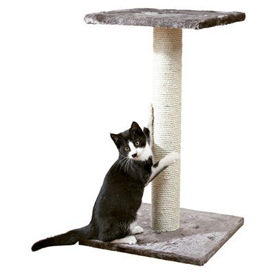 Como Hacer Rascadores Para Gatos en Casa