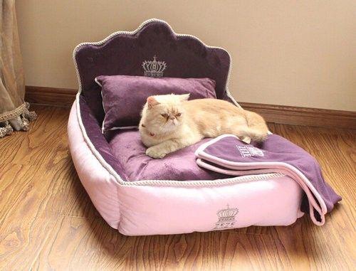 Como Hago Para Que Mi Gato Duerma En Su Cama