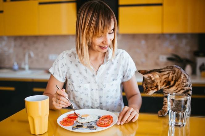 Que Tanto Afectan los Gatos en el Embarazo