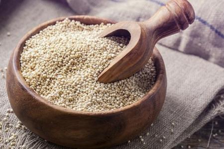 Quinoa Para Perros Galletas Beneficios